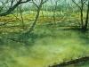 skogen-aquarel-horizontaal-berken-56x200
