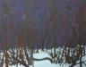 skogen-blauw-winterlandschap-140-x166-gemengde-techniek